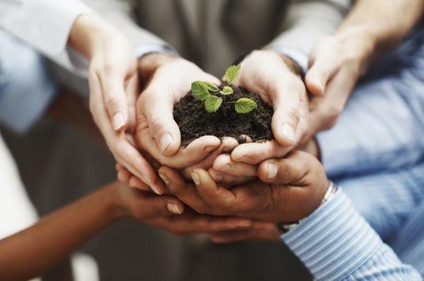 Pengertian Marketing Support Adalah Tugas Dan Perannya